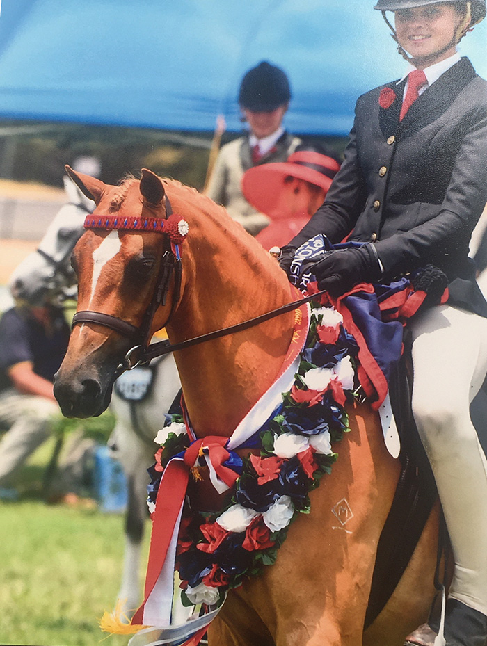 5 yo mare Not long under saddle  VAS Saddle Horse Championships January 2020 Champion 1st season sm pony Champion Rising star sm pony Reserve Champion open pony
